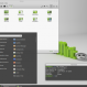 interface linux mint